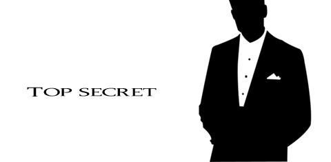 segreto zanzariere plissè